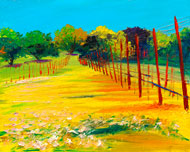 Afternoon Spring Vineyard, Ann Rea©